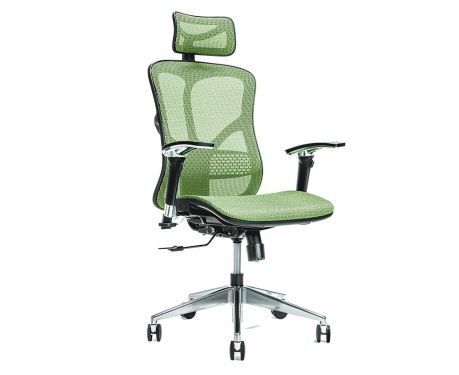 Ergonomischer Bürosessel ERGO 500 Grün
