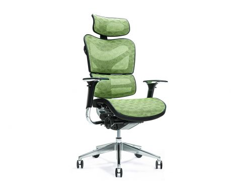 Ergonomischer Bürosessel ERGO 700 Grün
